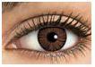 Freshlook Colorblends Brown