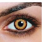 Triple Color Hazel contact lenses