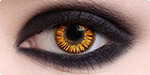 Gold Vampire Twilight contact lenses