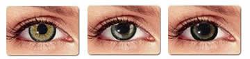 gray circle lenses